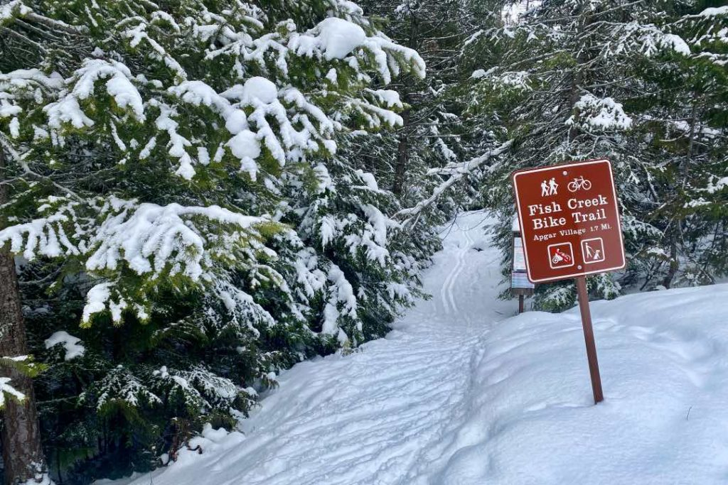 Snowy forest with ski tracks, brown trail sign for Fish Creek Bike Trail in the center of it.